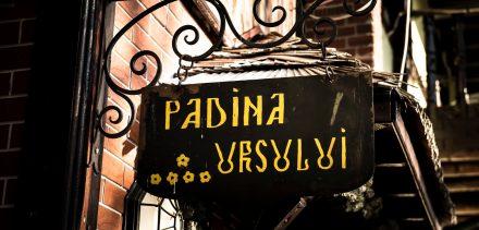 Padina-Ursului-Sigla